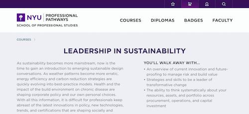 Leadership in Sustainability